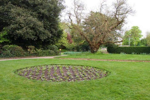 The-gardens-C
