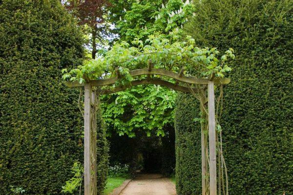 The-gardens-D